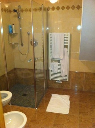 Garni Hotel Wildbach: the shower