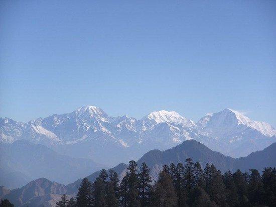 Νεπάλ: Wilderness around you