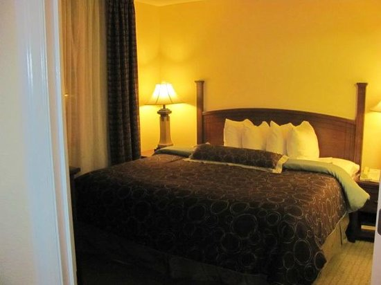 Staybridge Suites near Hamilton Place: Room