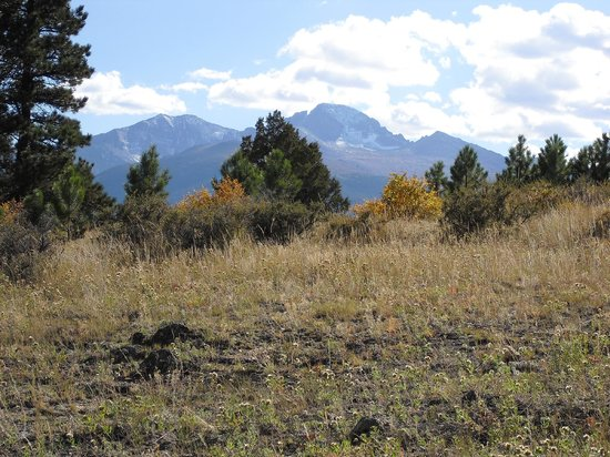 StoneBrook Resort: Hiking around StoneBrook - View of Longs Peak.