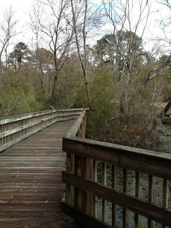 Magnolia Springs Park: walk way across the spring