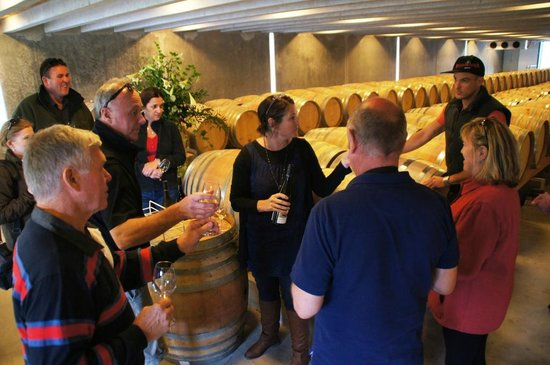 Peregrine Wines: Tasting session in maturation cellar