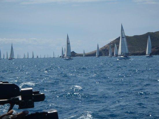 Simpson Bay, St. Martin/St. Maarten: Lambada Tour