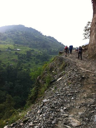 Himalayan Social Journey - Day Tours: Most of the trek rolled up and down like this
