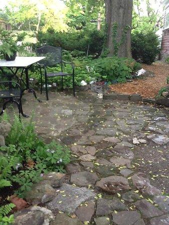 Elk Street Cottage : side yard