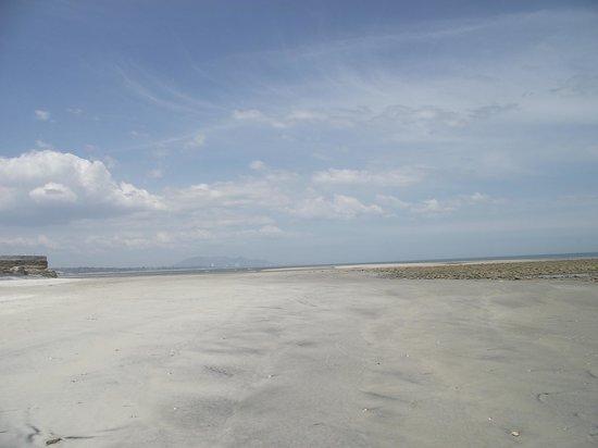 Manglar Lodge: Low tide