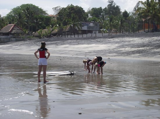 Manglar Lodge : Swimmers and learning to surf