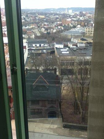 Residence Inn Pittsburgh University/Medical Center: View of city
