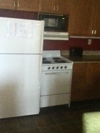 Residence Inn Pittsburgh University/Medical Center: Kitchen area - fridge