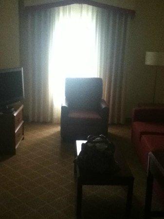Residence Inn Pittsburgh University/Medical Center : Living room area