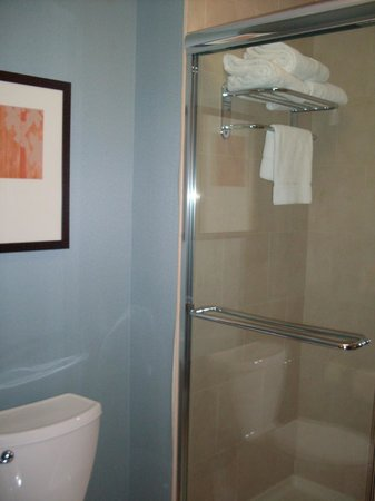 Hyatt Place Charleston Airport and Convention Center : Bathroom