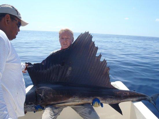 Villa del Pescador: Pesca de pez vela