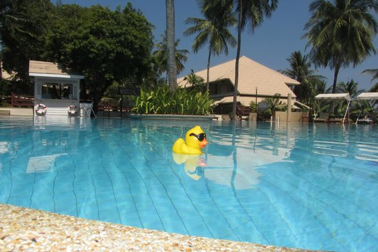 Cape Panwa Hotel: Main pool with 'guest'