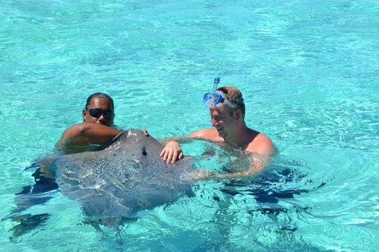 Four Seasons Resort Bora-Bora : Half day snorkeling with the sharks and rays