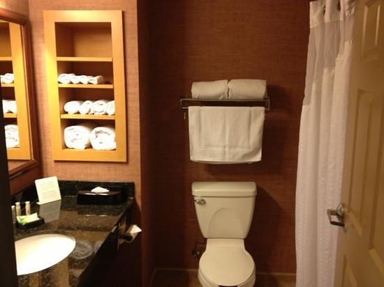Holiday Inn Express Hotel & Suites Brainerd-Baxter : bathroom