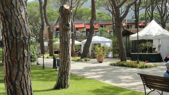 Riva del Sole Resort & SPA: Viale d'accesso