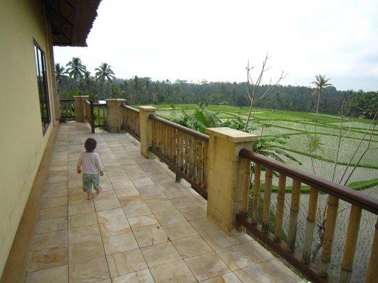 Villa Aruna: Plenty of room