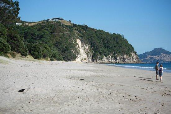 Hahei Holiday Resort: Hahei Beach