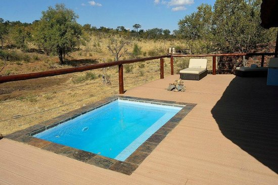 Royal Madikwe Luxury Safari Lodge: Room No. 4 pool
