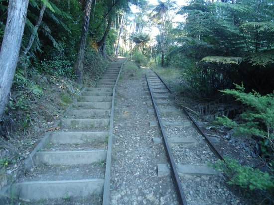Karangahake Gorge: Steps to walk up and tracks that the ore trucks used to carry the rock for the mines.