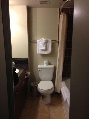 Alberta Place Suite Hotel: bathroom