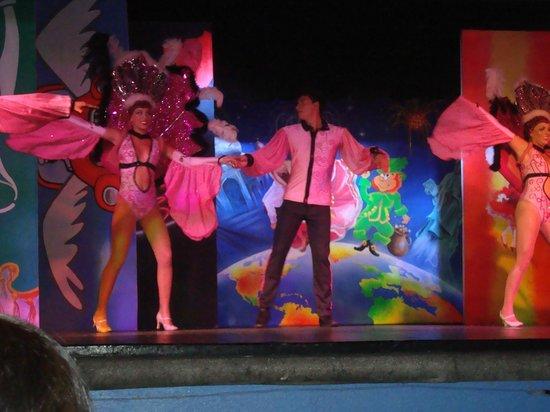 Gran Festivall All Inclusive Resort: Some good shows