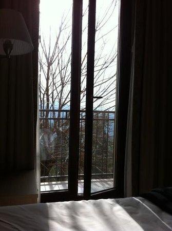 Hotel Fortebraccio: panorama