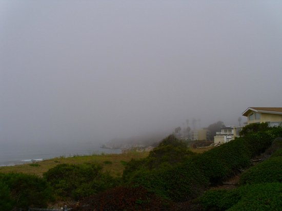 Kon Tiki Inn: foggy view