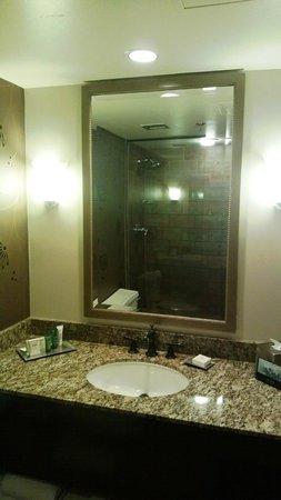 Hilton DFW Lakes Executive Conference Center: Bathroom