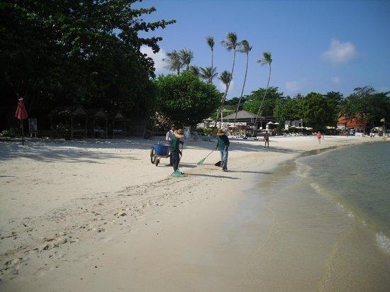 Sareeraya Villas & Suites: Cleaning the beach