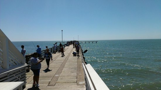 Caught a bunch of pompano picture of galveston fishing for Galveston jetty fishing report