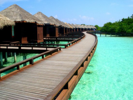 Sheraton Maldives Full Moon Resort & Spa: Водные бунгало