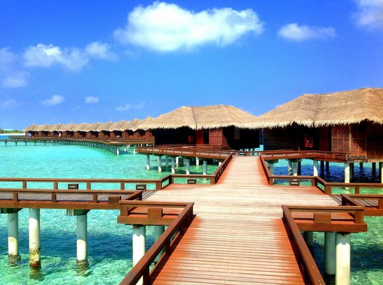 Sheraton Maldives Full Moon Resort & Spa: Водные бунгало