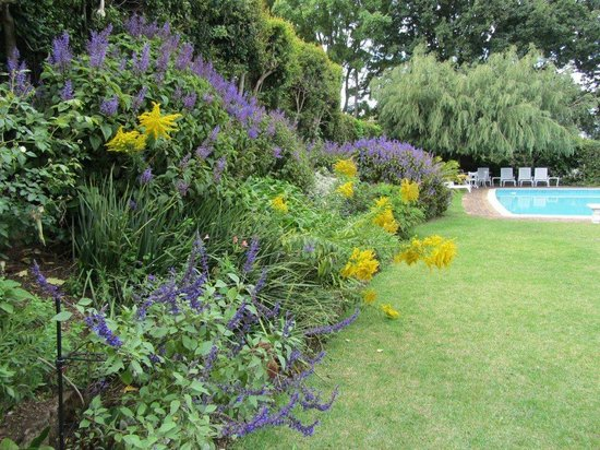 Bel Ombre Cottages : Garden at the swimming pool