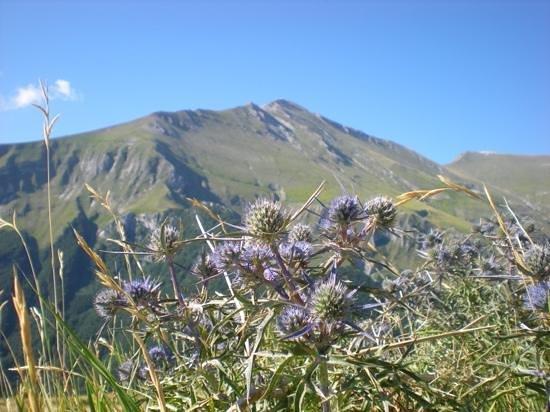 Monti Sibillini: Monte Priora