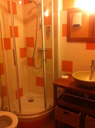 Campanile Orleans Centre Gare : bathroom of 310