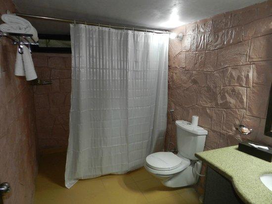 Thar Oasis Resort & Camp : salle de bain