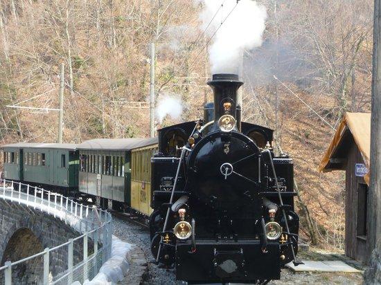 Railway Museum Blonay-Chamby : Le train à la halte du viaduc