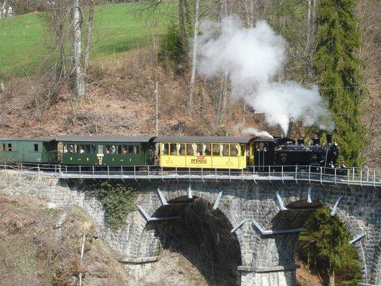 Railway Museum Blonay-Chamby : Train sur le viaduc