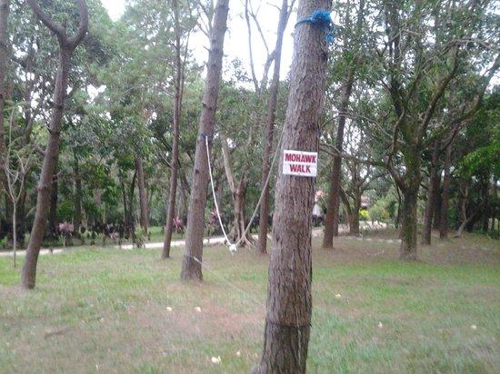 Landscape - Picture of EPIC PARK Rainforest Camping Tanay, Luzon - Tripadvisor