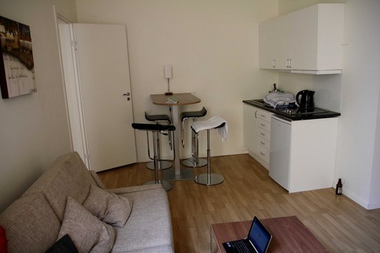 Frogner House Apartments- Arbinsgate 3: The main room (kitchen side)