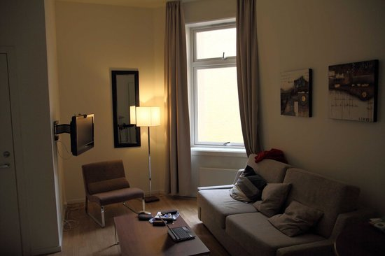 Frogner House Apartments- Arbinsgate 3: The main room (living side)