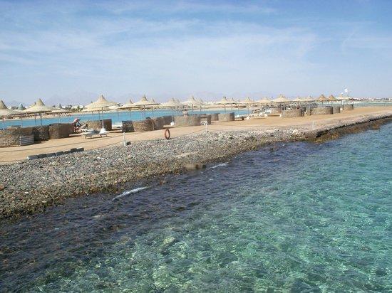 Coral Beach Resort : beach