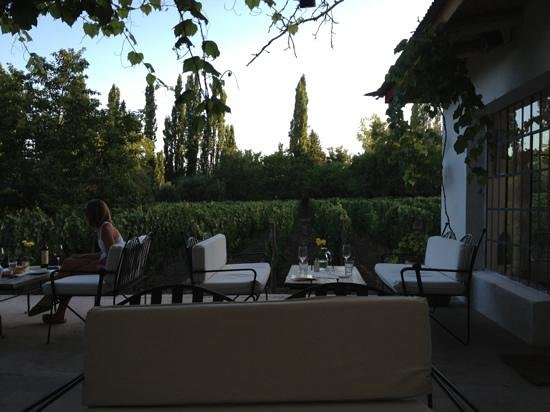 Finca Adalgisa Wine Hotel, Vineyard & Winery: 6pm tapas and wine tasting. best part of the day !
