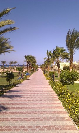 Coral Beach Resort : walk to beach