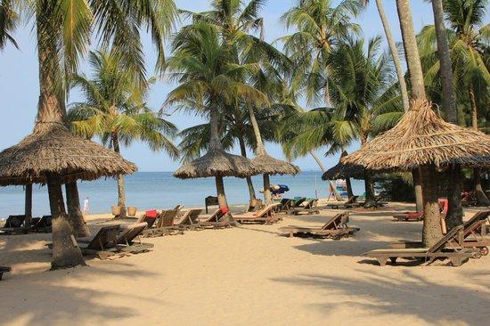 Mai House Resort: Strand vor dem Mai House - viel viel Platz für die Gäste