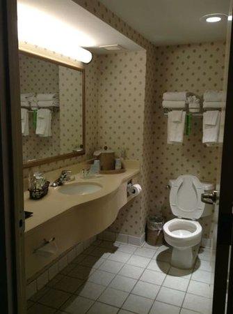 Hampton Inn NY - JFK: 水まわり