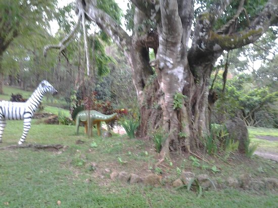 Entrance - Picture of EPIC PARK Rainforest Camping Tanay, Luzon - Tripadvisor