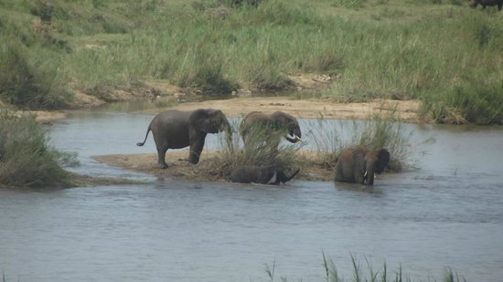 Buckler's Africa: view from the deck