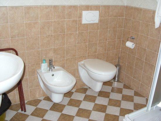 Hotel Virginia: Il bagno della stanza